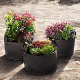 These baskets are so practical (and so inexpensive) that it's best to have 
