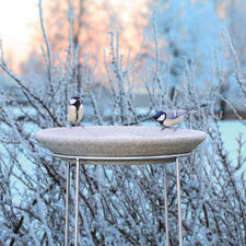 Your Granicium® bird bath is frost resistant up to -50°C.