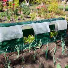 SuperDome Polytunnel - Optimal growth conditions for your plants. Ready in 5 minutes.