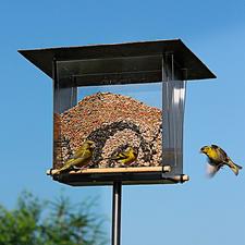 "Bird Feeder ""Viewing Window"" - Urban, modern, made of brushed stainless steel."
