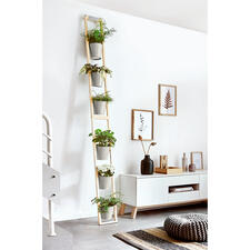 Plant Ladder - Convenient and space-saving: Your lush Garden of Eden in the smallest of spaces.
