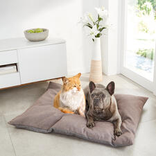 Swiss Stone Pine Pet Cushion - Wellness for four-legged friends: Cosy cushion bed with sheep's wool and natural Swiss stone pine.