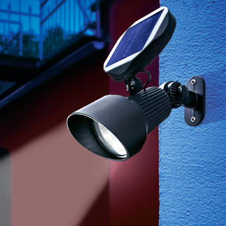Solar Spotlight Highlight your garden's best features with the latest in LED and solar technology. 100% solar powered.