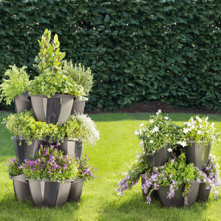 Tiered Plant Tower Opulent floral splendour in a small space. Also ideal for soft fruit, vegetables & herbs.