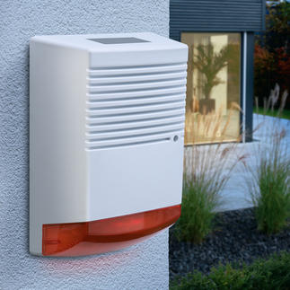 Dummy Alarm with blinking LED Effective deterrent with minimal investment. Day and night.