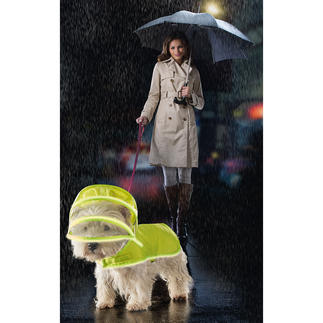 Push Pushi Dog Raincoat As stylish as in Hollywood. Smart and functional. With removable transparent hood.