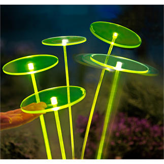 Swing Lights, 1 piece The new generation of suncatchers perform magical fascinating light effects.