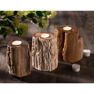 Fossilised Wood Tealight Holder Every piece is unique – with a distinctive shape and grain.