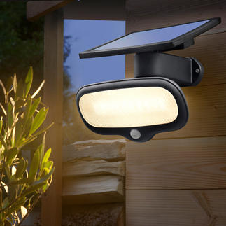 500 Lumens Solar Safety Light Brighter than a 60 watt bulb – without using any electricity.