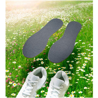 CLEANFEET Anti-Odour Insoles, 3 Pairs Bio-active insoles that neutralise foot odour – instead of just masking it.