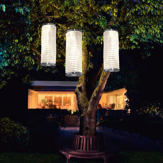 Solar Light Columns, Set of 3 Softly lit garden lanterns.