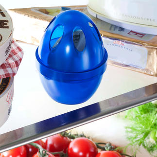 Fridge Odour Destroyer Natural freshness in your fridge.