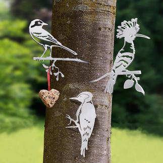 Contour Birds Naturalistic bird motifs made of finely lasered steel. Now an eye-catcher in your garden.