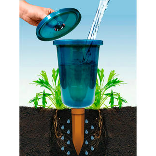 Hydro Cup Watering System, Set of 4 Easy, economical, efficient.