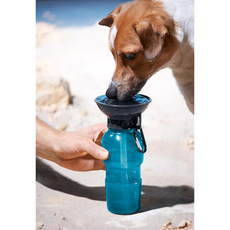 AutoDogMug™ Dog Water Bottle Fresh and clean water for your dog anywhere.