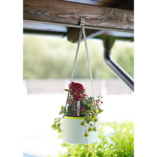 Hanging Basket Sunia For hanging and displaying. With large water reservoir. Made from sturdy, weatherproof plastic.