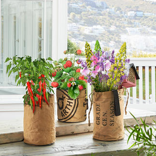 Mini Garden With these plant bags, your balcony, kitchen window, or patio becomes a lush summer garden.
