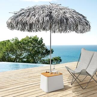 Fringed Parasol Spectacular focal point in the garden, on the terrace, by the pool, ...