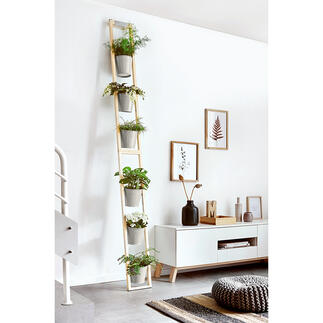 Plant Ladder Convenient and space-saving: Your lush Garden of Eden in the smallest of spaces.