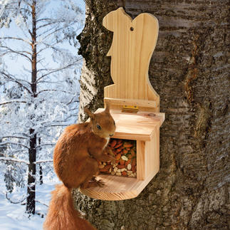 Squirrel Feeder Good news for squirrels. Soon to be the busiest playground in your garden