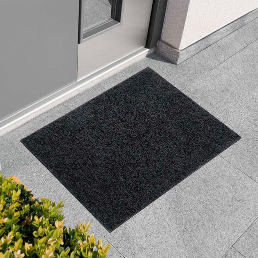 Flat Door Mat As elegant as a fine carpet. But tough on dust, mud and dirt.