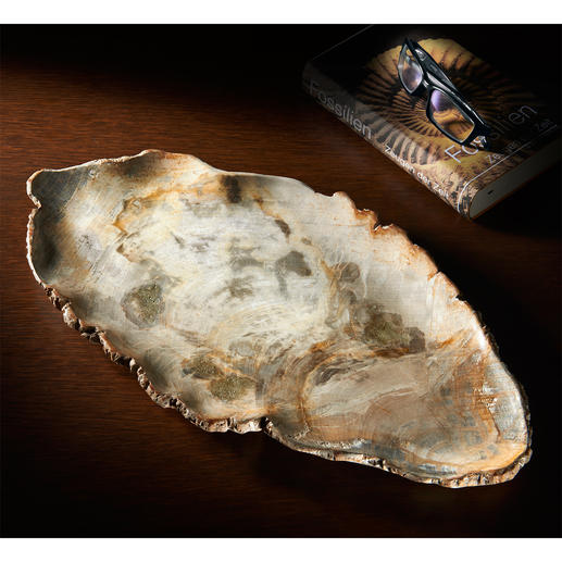 "Serving Platter ""Fossil Wood"" Unique serving platter made from petrified wood, 20 million years old."
