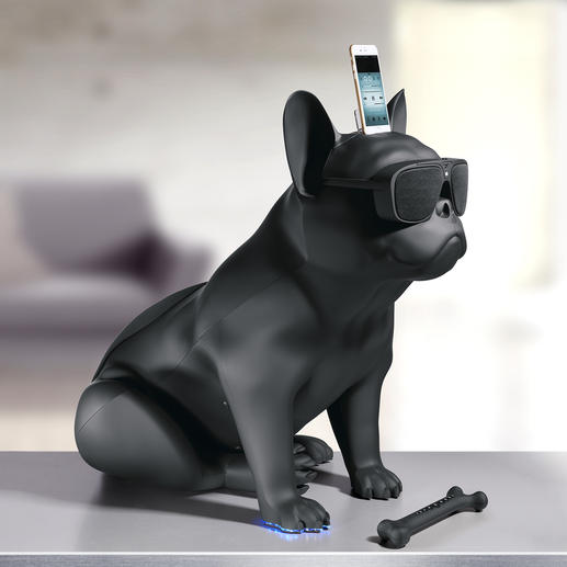 AeroBull HD - This French bulldog delivers top-notch HD sound quality. By Jean Michel Jarre.