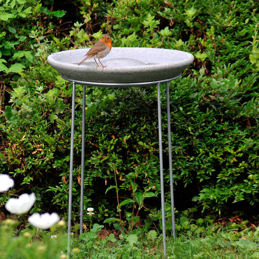 """Comes with a 50cm (19.7"""") high stainless steel stand to protect birds from cats."""