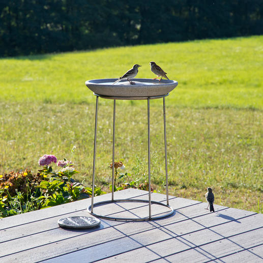 "Comes with a 50cm (19.7"") high stainless steel stand to protect birds from cats."
