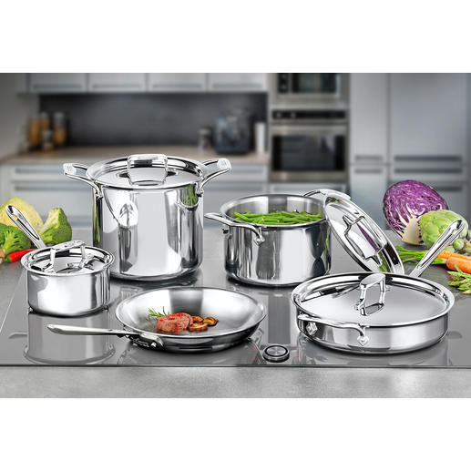 All-Clad Premium Cookware Stainless d5 Icons of multi-layered, stainless steel cookware. From professional cookware supplier All-Clad, USA.