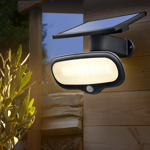 500 Lumens Solar Safety Light - Brighter than a 40 watt bulb – without using any electricity.