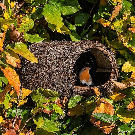 Simon King Bird Nest Now the robins and other birds can nestle in an award-winning design.