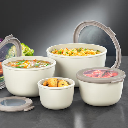 Multi Bowl, Set of 4 The multi-purpose bowl for preparing, serving, storing, freezing, heating and transporting.