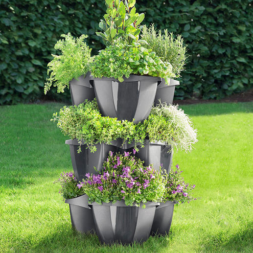 Tiered Plant Tower, 3 elements Opulent floral splendour in a small space.