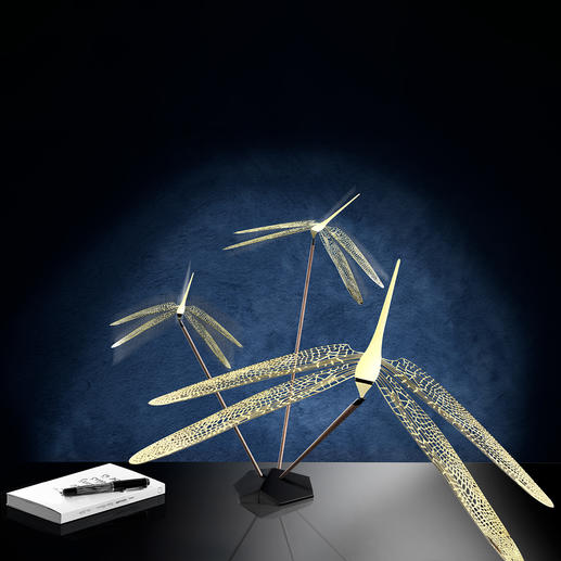 Dragonfly Balance Object
