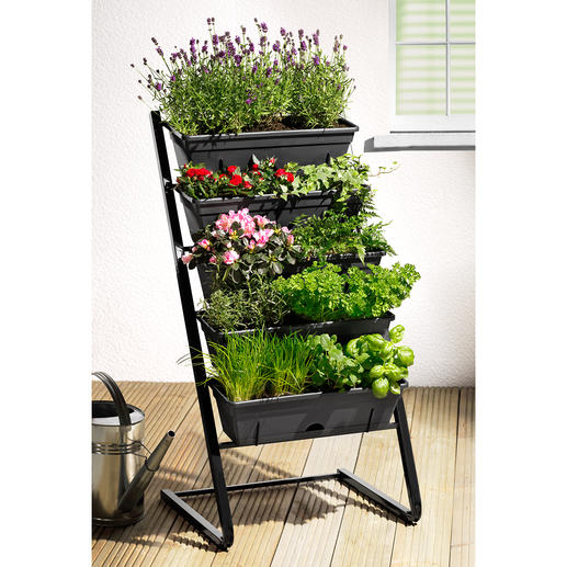 Plant Stand Abundant green, beautiful flowers and a rich harvest: Space-saving on five levels.