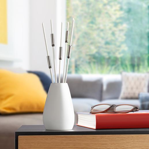 Odour Killer Sticks, Set of 5 - Perfect to combat tobacco smoke, kitchen odours, plastic fumes, etc.