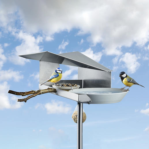 Design Bird Feeder Protects the feed from rain and fills up the birdbath at the same time.