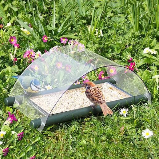 Floor Bird Feeding Station Feed. Protect. Observe.
