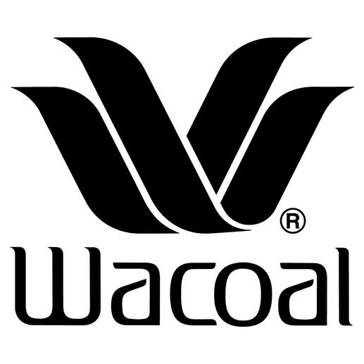 Wacoal High Waist Shaping Briefs High waist briefs by Japanese underwear specialists Wacoal, the only manufacturer of assembled shapewear.