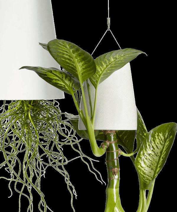 Sky Planter Plant Pot
